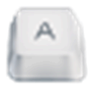 Any Keylogger logo