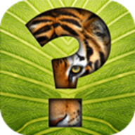 Guess the Animal logo