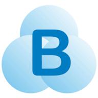 Braina logo