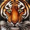 Tiger Commissary logo
