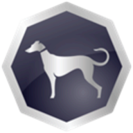 Sighthound Video logo