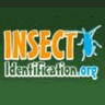 Insect Identification logo