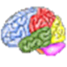 Brain Workshop logo