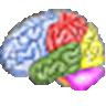 Brain Workshop logo