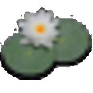 LilyPond logo