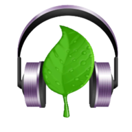 Natura Sound Therapy logo