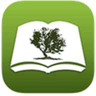 Bible by Olive Tree logo