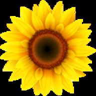 VideoPsalm logo