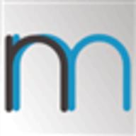 NameMesh logo