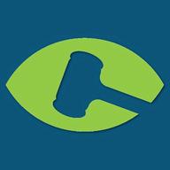 binEye Buy-It-Now Catcher logo