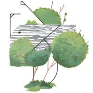 botwick logo