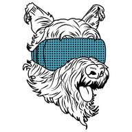 rumii logo