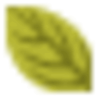 Mail Tester logo