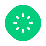 kiwiHR logo