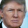 The Donald Test logo