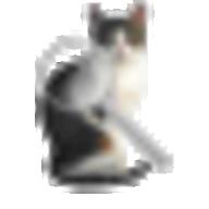 GizmoLoupe logo