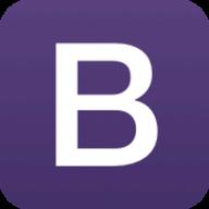 Bootstrap Themes logo