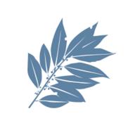 DaphnaBI logo