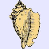 the xonsh shell logo