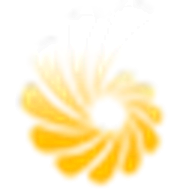 MaxMirror logo