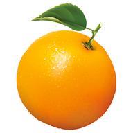 Orange Manager logo