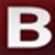 BidMagic Proposal Software logo