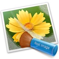 Neat Image logo