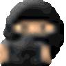 Noise Ninja logo