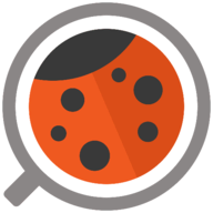 Pay4Bugs logo