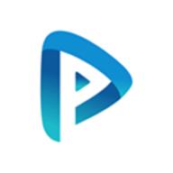Playment logo