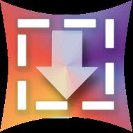Downvids.net logo