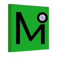 Mintm logo