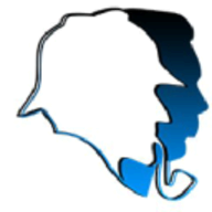 BlurSpy logo