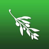 Olive Video Editor logo
