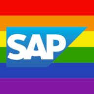 SAP NetWeaver logo