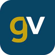 Gold-Vision logo