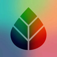 Realifex logo
