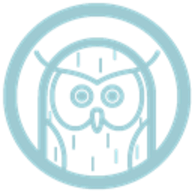 Owlskip logo