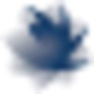 IBR_Plus logo