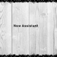 Now Assistant logo