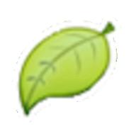 namevine logo