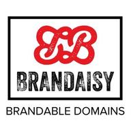 Brandaisy logo