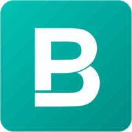 BigPicture.io logo