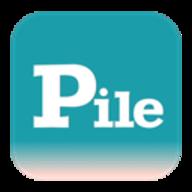 PileMD logo