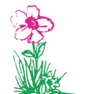 Homeland Florists logo