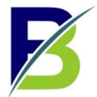 Blink Consulting logo