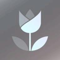 Live Focus logo