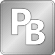 PerfectBrain Professional logo