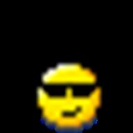 Winsock Packet Editor logo