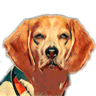 Beagle IM logo